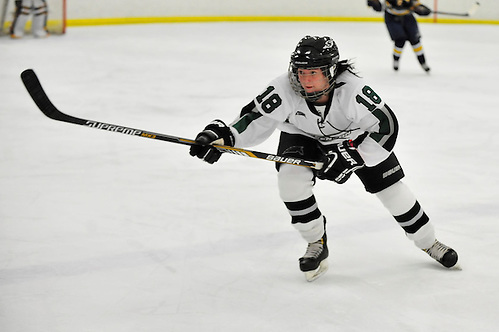 The Stevenson women's ice hockey team dominated the Neumann Knights Tuesday afternoon at the Reisterstown Sportsplex, as they took a 6-1 victory. (Sabina Moran/Stevenson Athletics)
