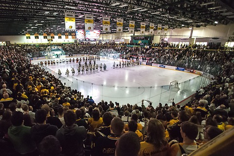 (photo: NMU Athletics)