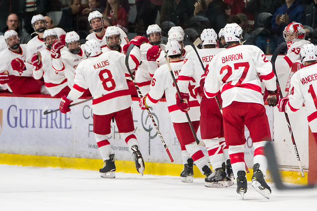 Cornell players celebrate a first period goal by Yanni Kaldis (8 - Cornell) (2018 Omar Phillips)