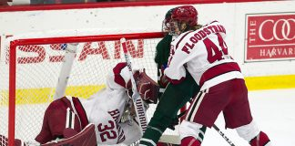 The Harvard University Crimson defeated the visiting Dartmouth College Big Green 3-1 in the first game of their ECAC quarterfinal series on Friday, March 15, 2019, at Bright-Landry Hockey Center in Boston, Massachusetts. (Melissa Wade)