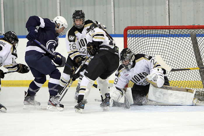 Players on the 2012-2013 All-USCHO D-I Women's teams (Nicole Hensley) (Tim Brule)