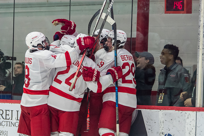 Cornell players celebrate the game tying goal with 1:46 to play in the third period against Harvard (2020 Omar Phillips)
