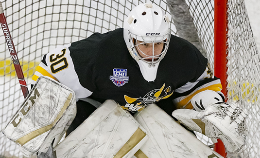 EHL netminder Bovarnick joins Suffolk for second half of '19-20 campaign