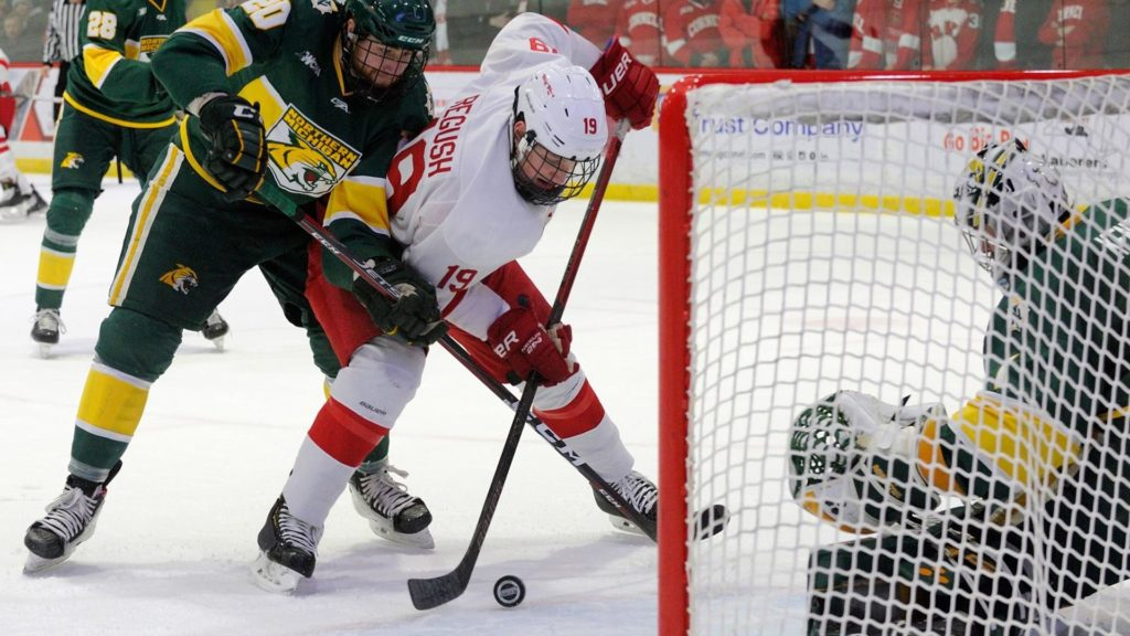 Cornell stays at top of USCHO.com Division I Men's Poll; North Dakota now No. 2, Minnesota State stays third