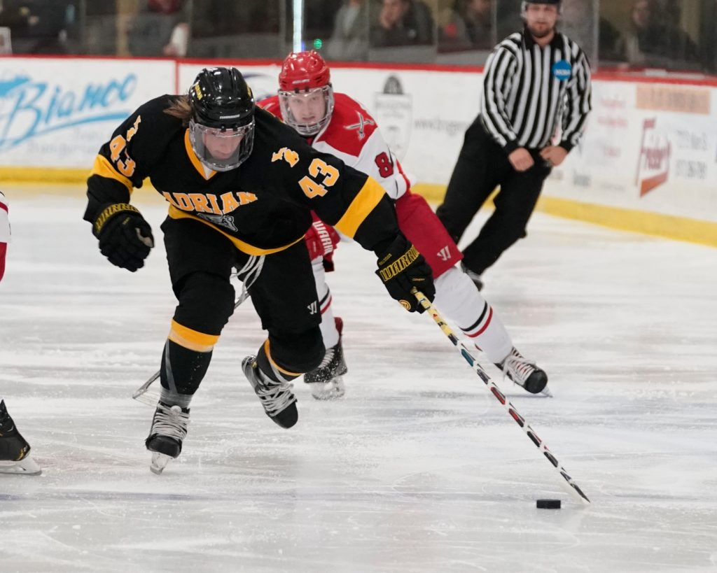 This Week in College Hockey: D-III West Playoff Preview