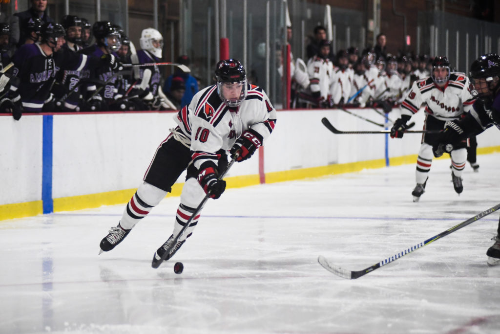 Weekend college hockey wrap-up, D-III East: February 24, 2020