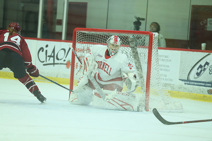 The Cornell Big Red women's ice hockey team competes against Harvard on Saturday, Jan. 18, 2020 in Lynah Rink in Ithaca, NY. (Darl Zehr/Cornell Athletics)