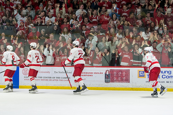 Cornell fans celebrate a third period goal against Harvard (2020 Omar Phillips)